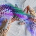 © Betty Butler-Rainbow Beach