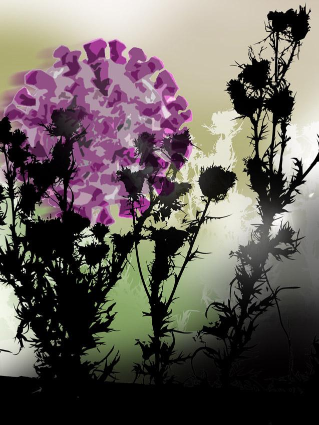 joyful blossoms